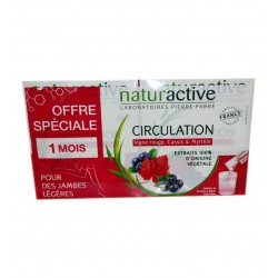 CIRCULATION JAMBES LEGERES LOT DE 2 X 15 STICKS NATURACTIVE