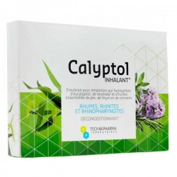CALYPTOL INHALANT 10 AMPOULES DE 5ML TECHNI PHARMA LABORATOIRE