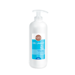 GEL LAVANT 2 EN 1 - 500ML GIFRER