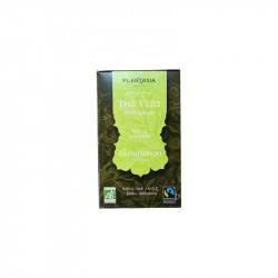 ELIMINATION THE VERT BIO 18 SACHETS PLANTASIA