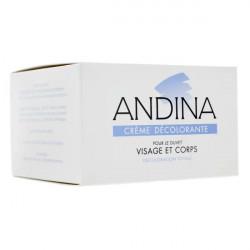 ANDINA CREME DECOLORANTE 30ML GIFRER
