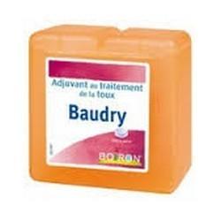 PATES PECTORALES BAUDRY BOIRON